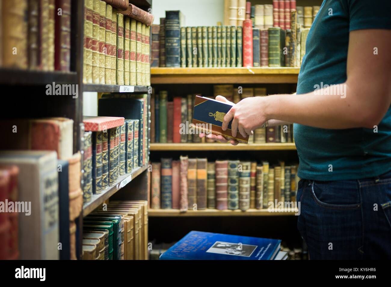 Exploring massive collection of used and second hand rare and collectible books. - Stock Image