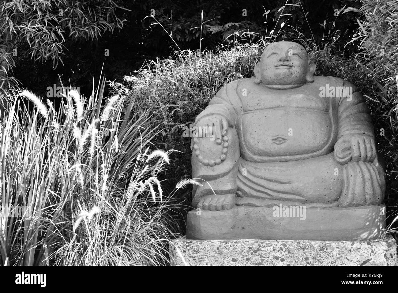 Large concrete buddha statue feature piece in a suburban garden, Sunshine coast, Queensland, Australia - Stock Image