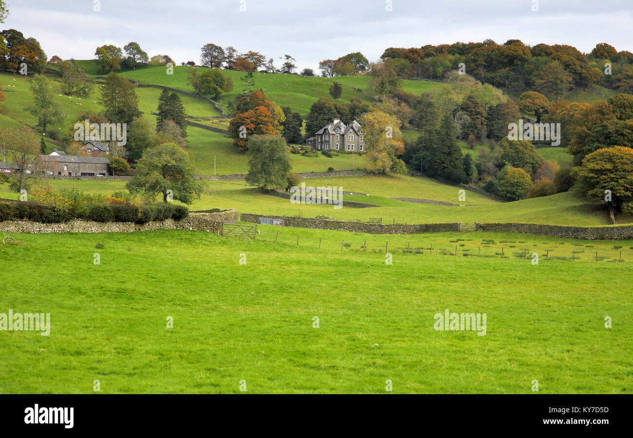 lakeland farmhouse and dry stone walls lake district cumbria - Stock Image
