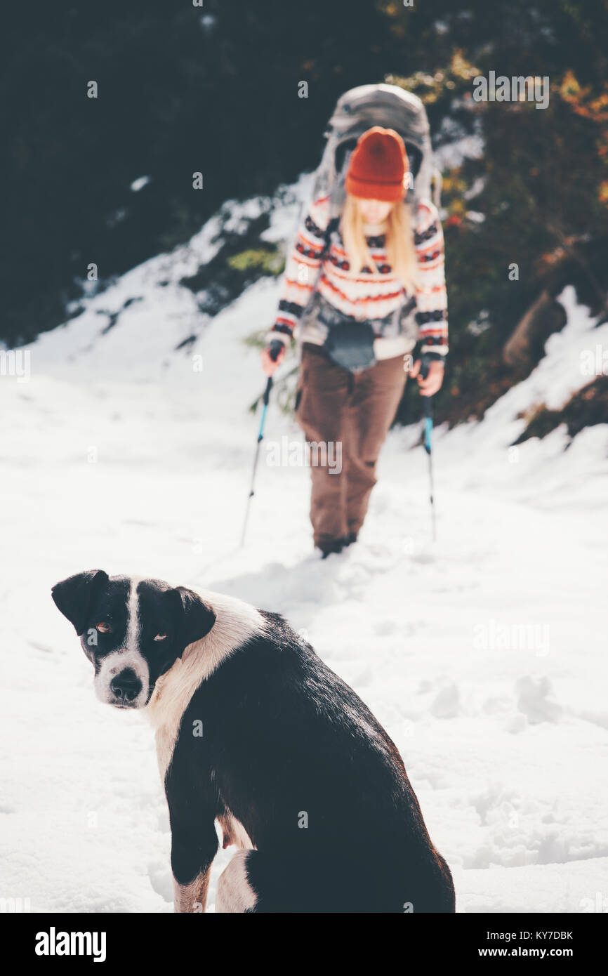 Dog waiting friend hiking Travel together Lifestyle Friendship pets concept winter vacations - Stock Image
