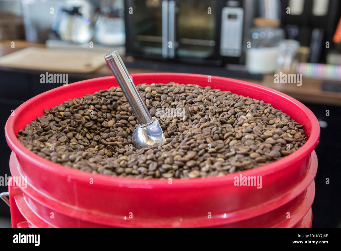 Dearborn, Michigan - A bucket of coffee beans at a coffee shop called Qahwah House, which imports and serves coffee - Stock Image