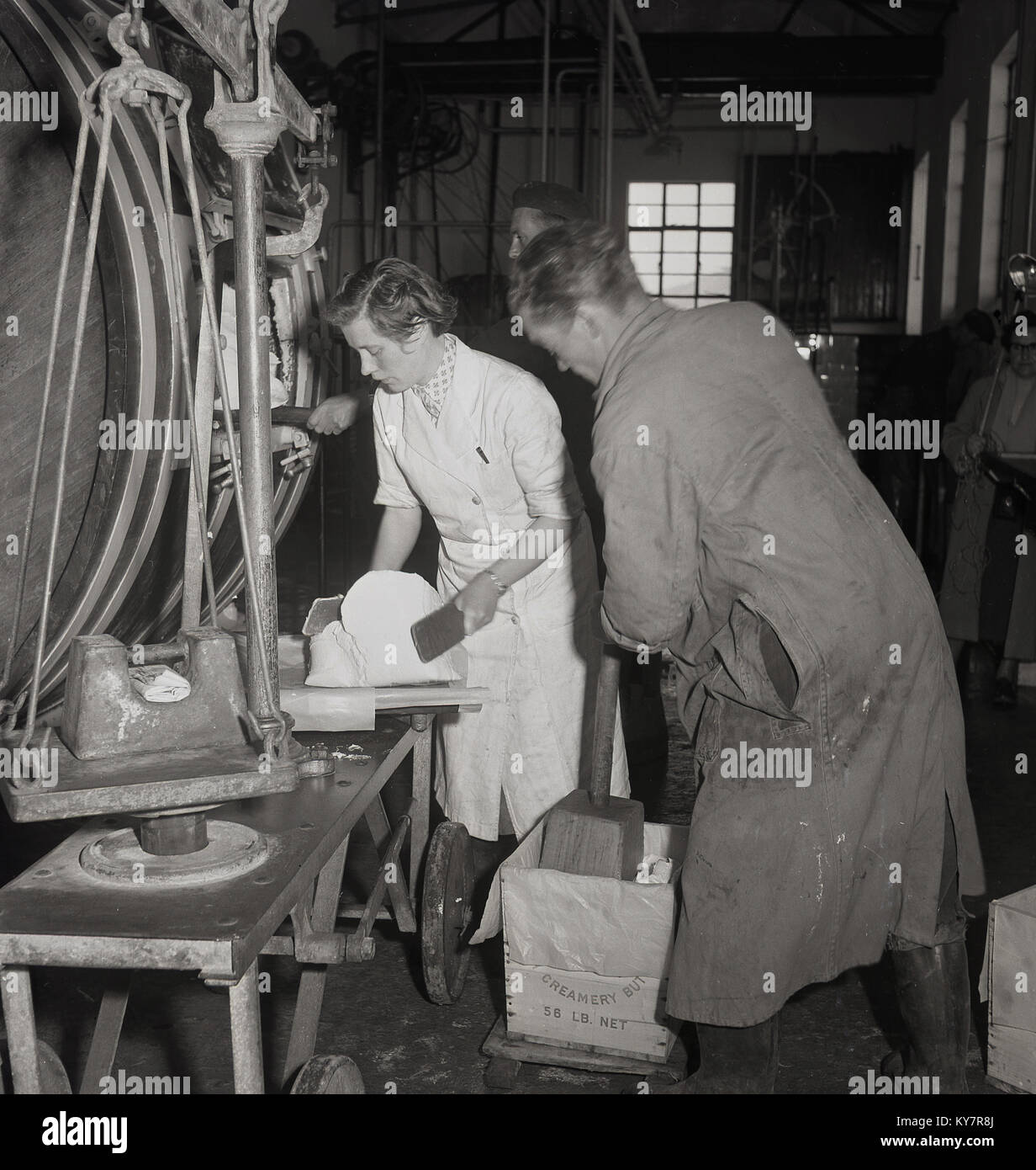 1950s, historical, a female dairy worker in a white-coat putting finished from the butter churn butter onto weighing Stock Photo