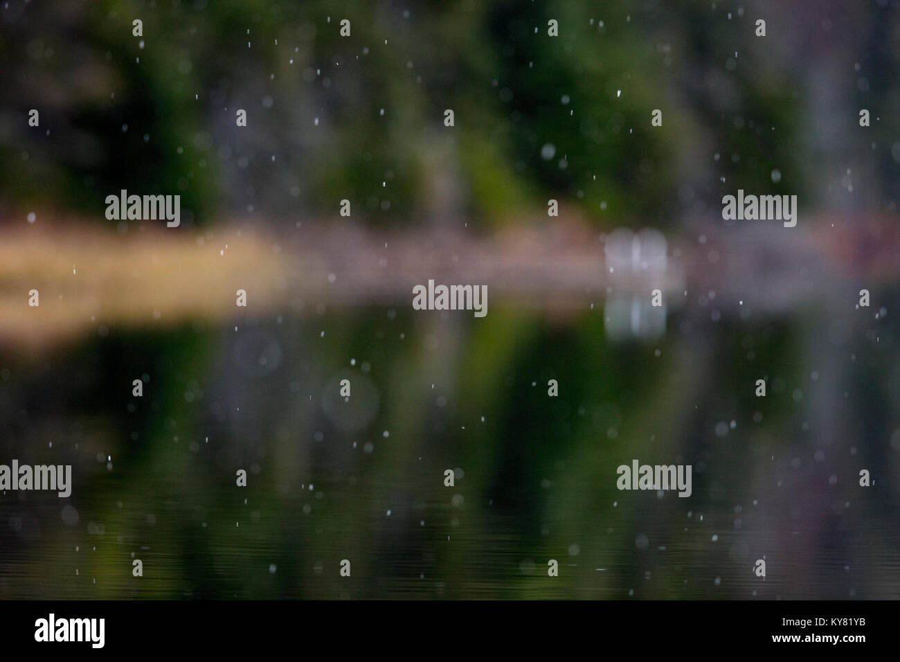 MAYNOOTH, ONTARIO, CANADA - November 7, 2017: Snow falls on a lake in autumn. - Stock Image