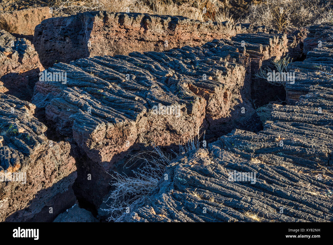 Deep cracks in Pahoehoe lava field, Carrizozo Malpais lava flow at Valley of Fires Recreation Area, Tularosa Basin - Stock Image