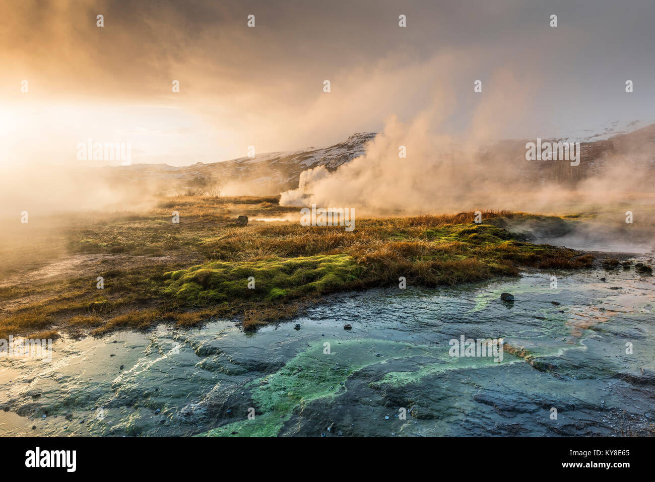 Geothermal region, Steam vents & geysers, Iceland, November, by Dominique Braud/Dembinsky Photo Assoc - Stock Image