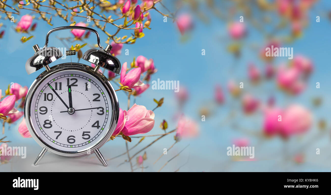 spring time clock flowers nature space for your text ...