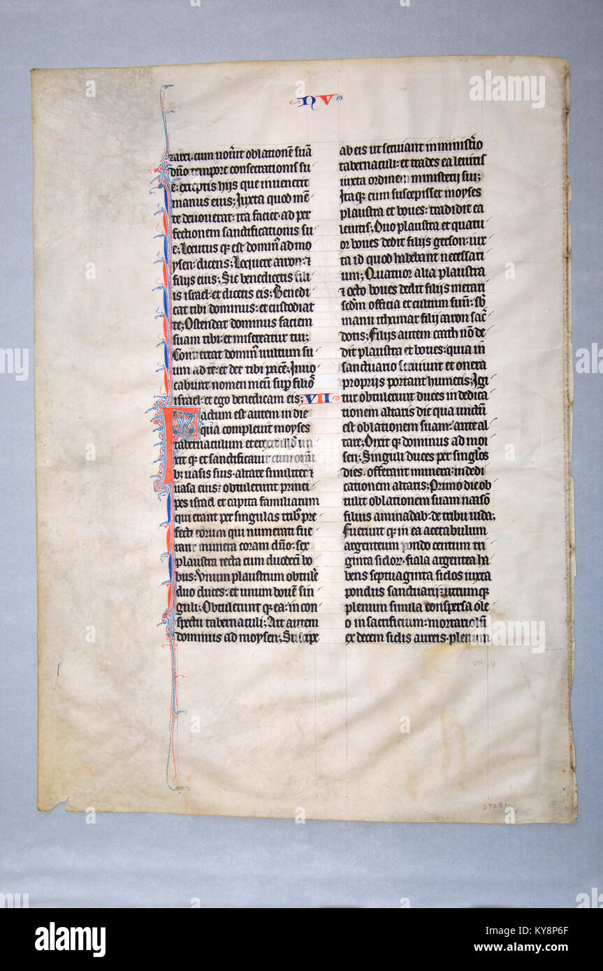 Page from a 14th Century Latin Vulgate Bible, written in Northern Europe on vellum. (Fragment 11) From the Reed - Stock Image