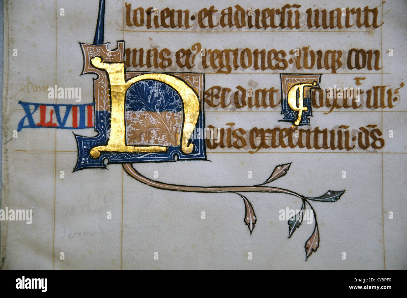 Detail of a letter on a page from a 14th Century Latin Vulgate Bible, written in England on vellum.  The capital - Stock Image