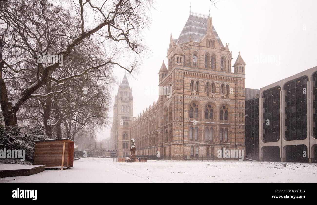 London, England, UK - January 18, 2013: Snow falls on the Natural History Museum in London's South Kensington - Stock Image