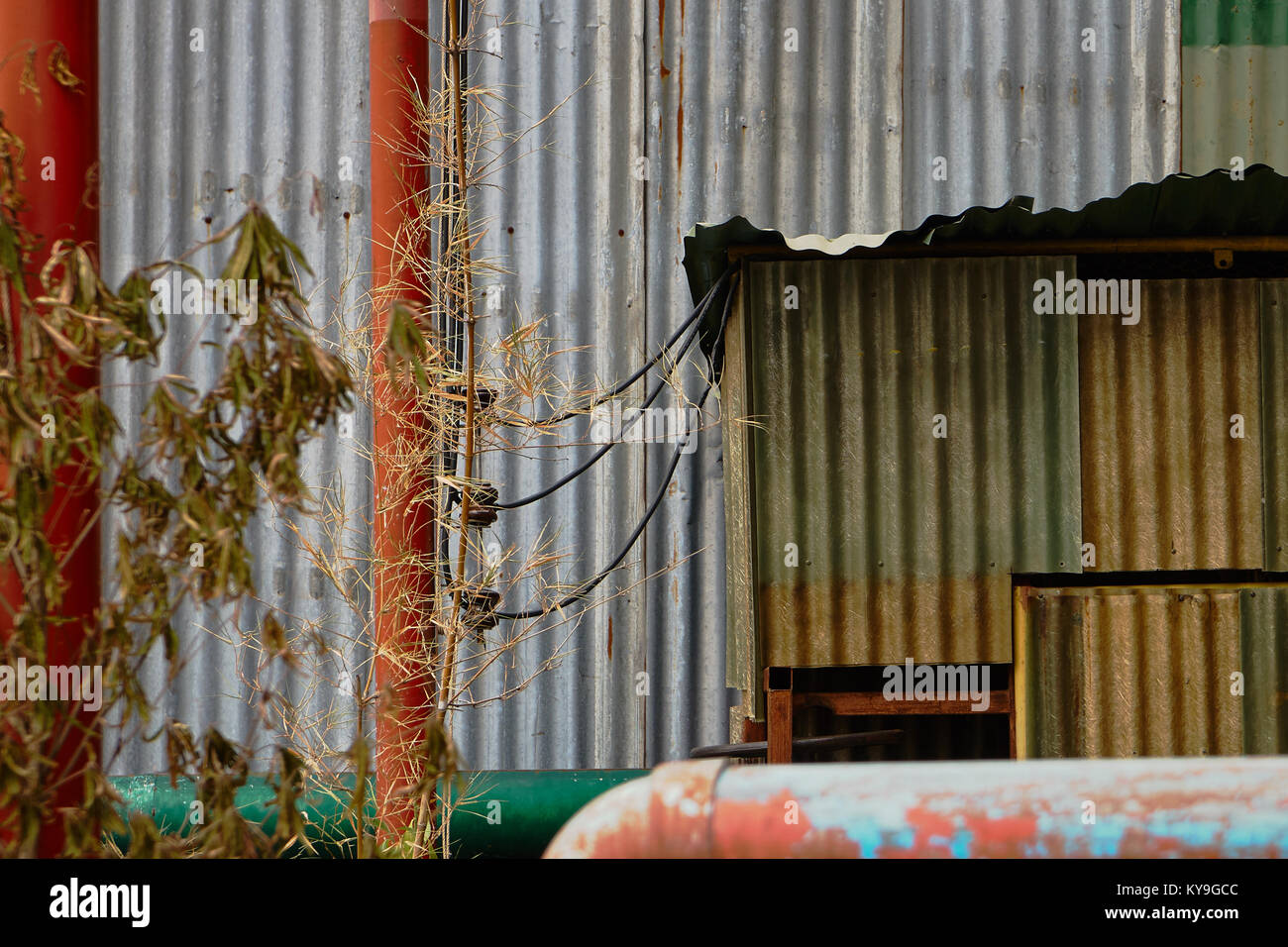 abstract image of painted corrugated metal wall - Stock Image