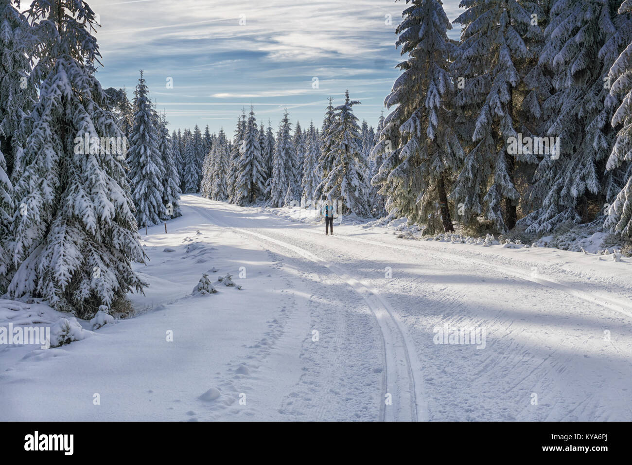 Road in mountains at winter in sunny day with single cross country skier. Trees covered with hoarfrost illuminated - Stock Image