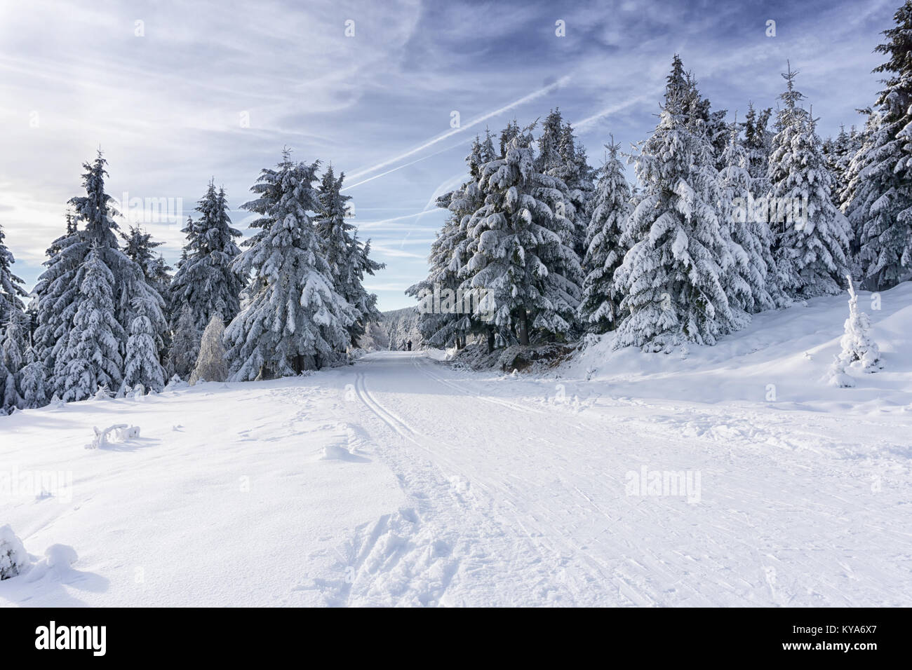 Winter road in mountains. Trees covered with fresh snow, clouds in the blue sky. Groomed ski trails for cross-country - Stock Image