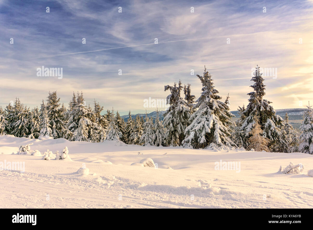 Mountain winter landscape, trees in mountains covered with hoarfrost and snow illuminated by the sun at late afternoon. - Stock Image