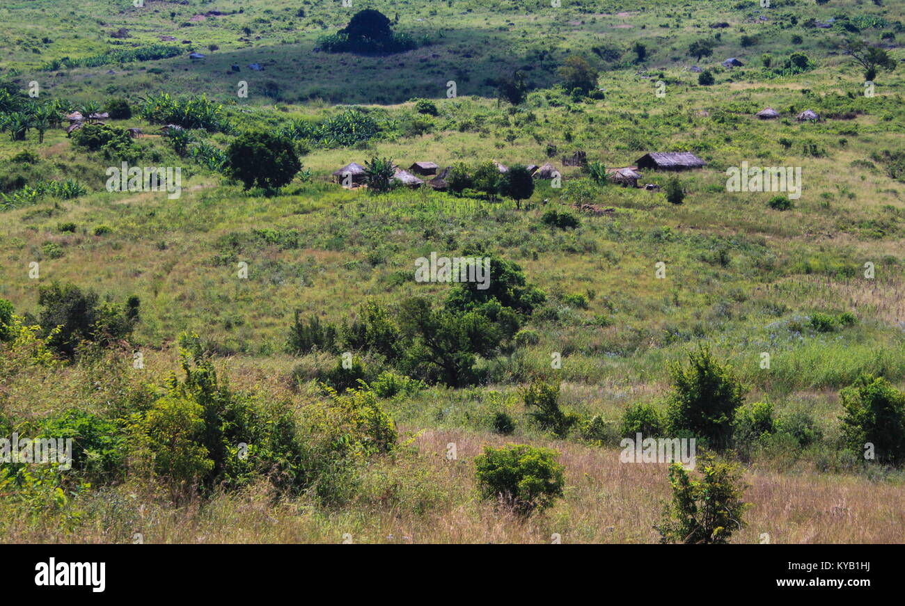 African landscape with a green jungle and huts, image in landscape format - Stock Image