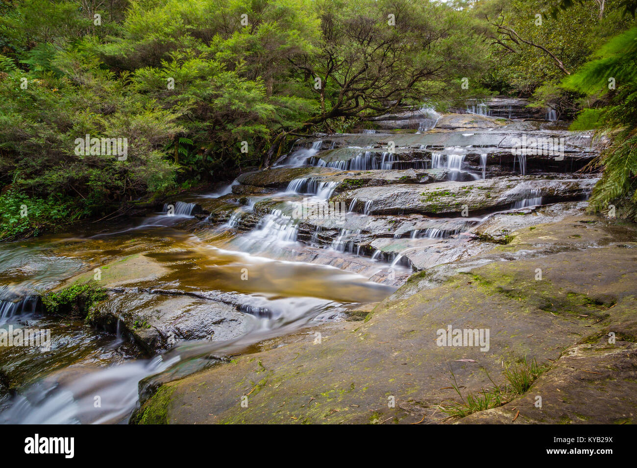 A long exposure shot of the Leura Cascades in National Park The Blue Mountains, Australia. - Stock Image