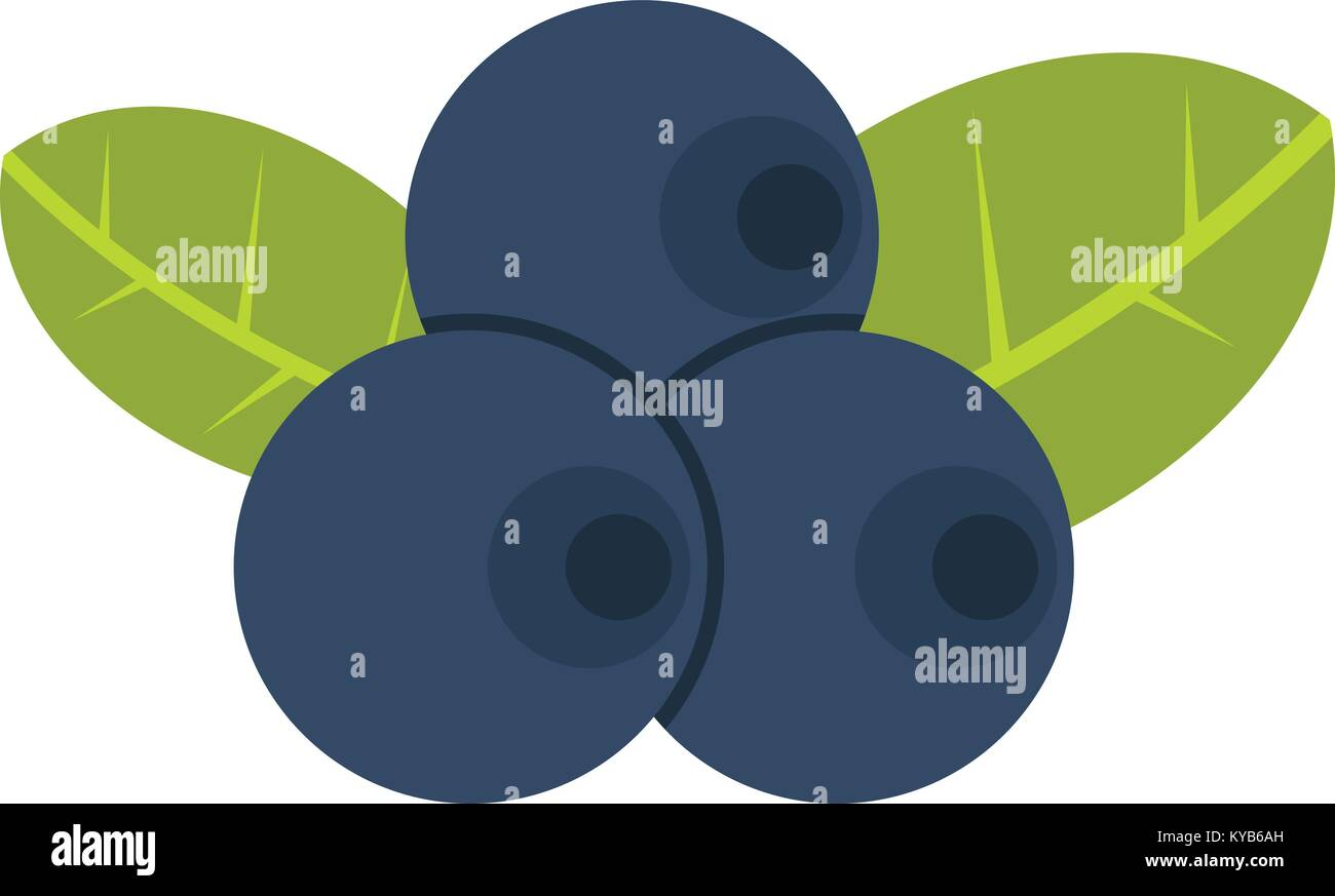 Fresh blueberries with leaves icon isolated - Stock Vector