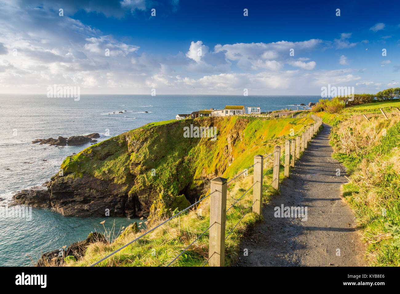 The South West Coast long distance footpath follows the cliffs close to Lizard Point in winter sunshine, Cornwall, - Stock Image