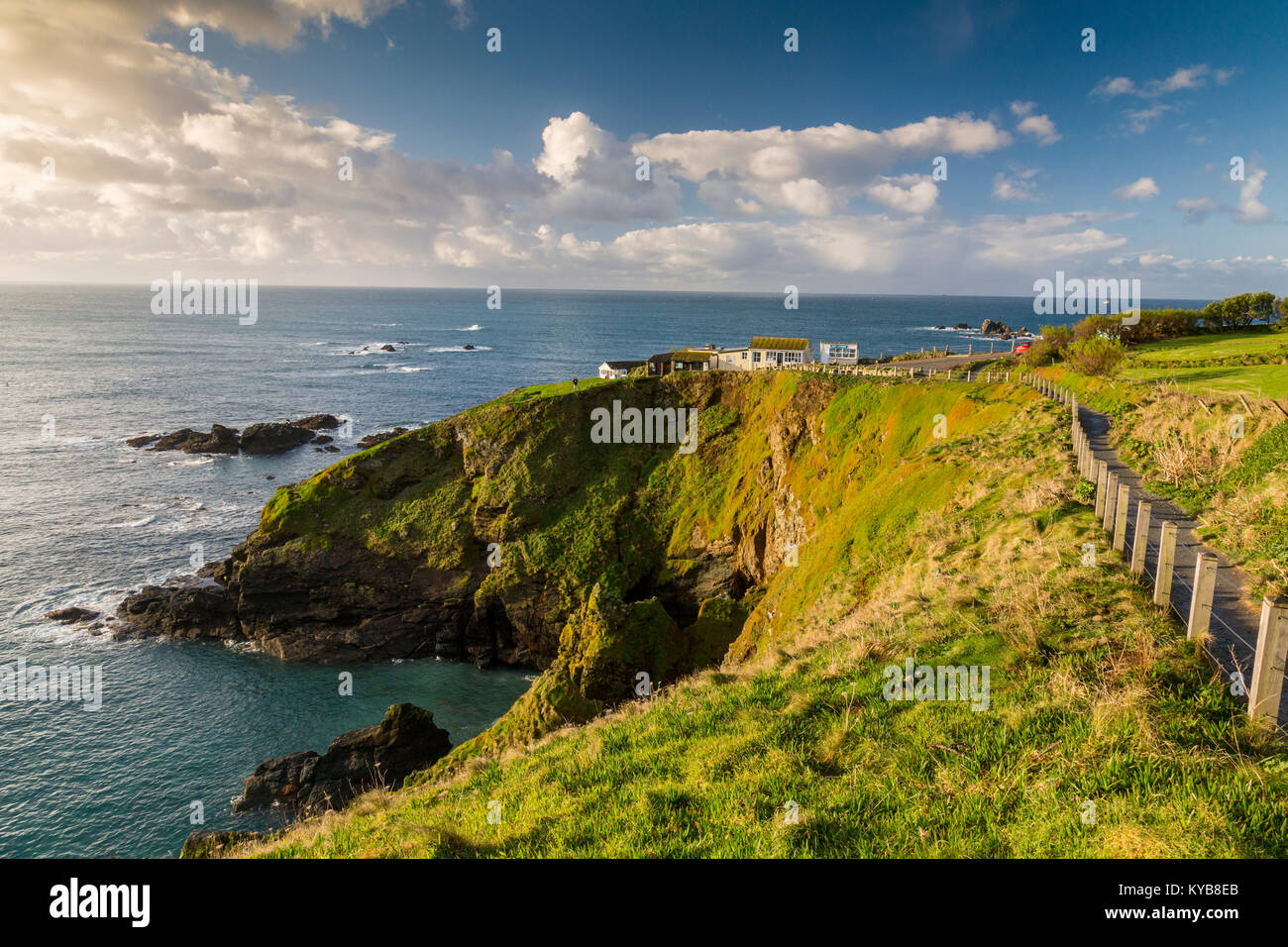 The South West Coast long distance footpath follows the cliffs close to Lizard Point in winter sunshine, Cornwall, Stock Photo