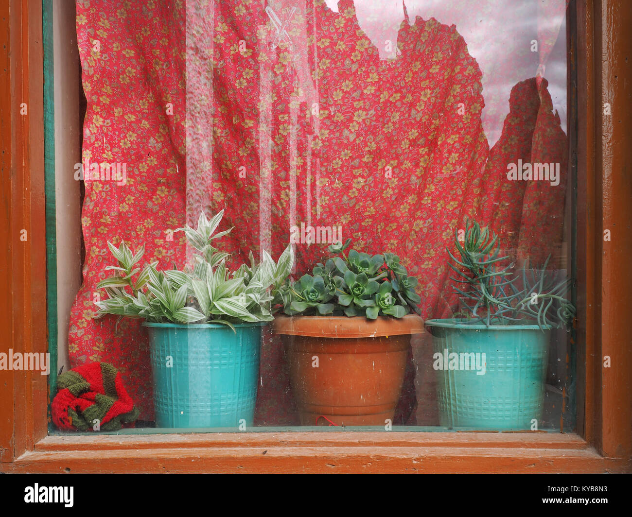 A Window With Bright Red Curtains Brown Vintage Frame But Sill Three Houseplants In Clay Pots
