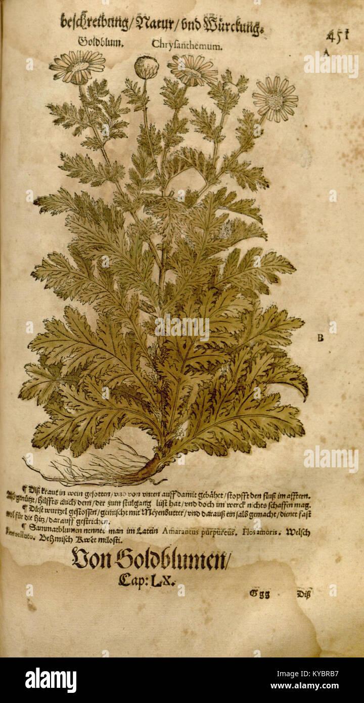 O Tannenbaum Latein.Dioscorides Book Stock Photos Dioscorides Book Stock Images Page