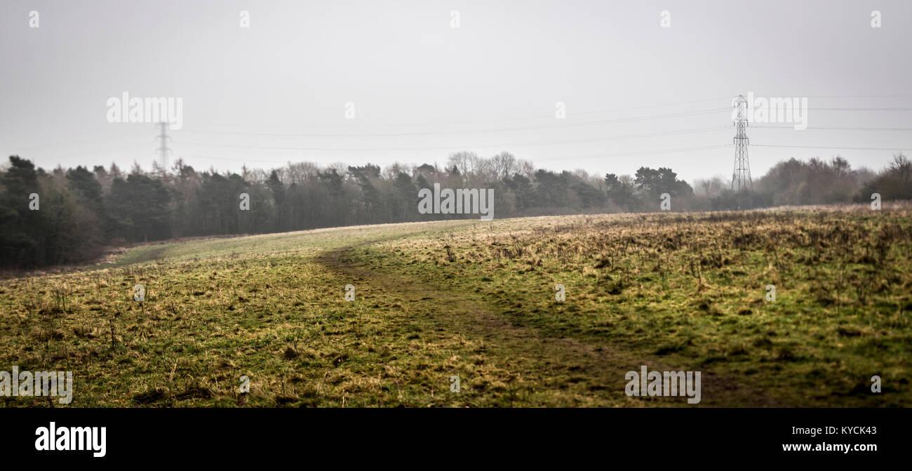 Pylons viewed across Bilton Fields, Harrogate Stock Photo