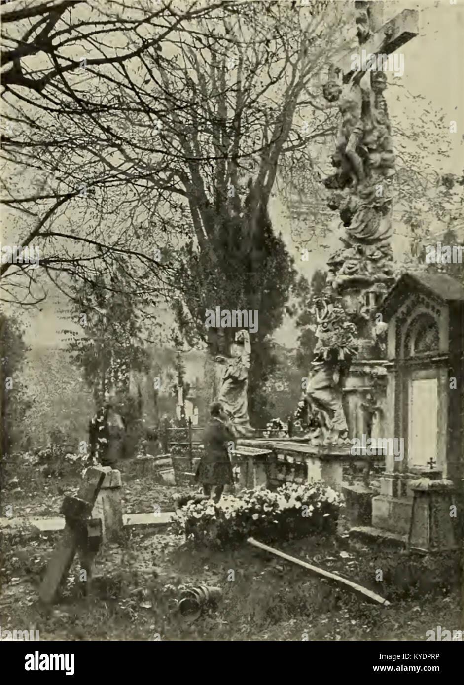 S 362 Abb 365 Partie aus dem Währinger Friedhofe Stock Photo