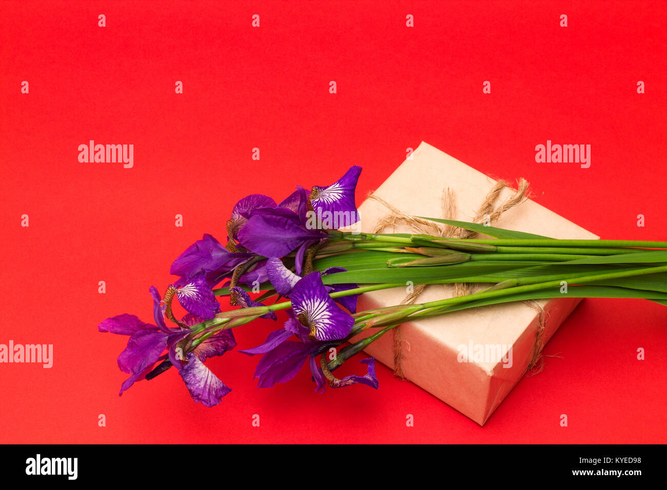 bouquet of purple iris flowers and a box with a gift on a red Stock ...