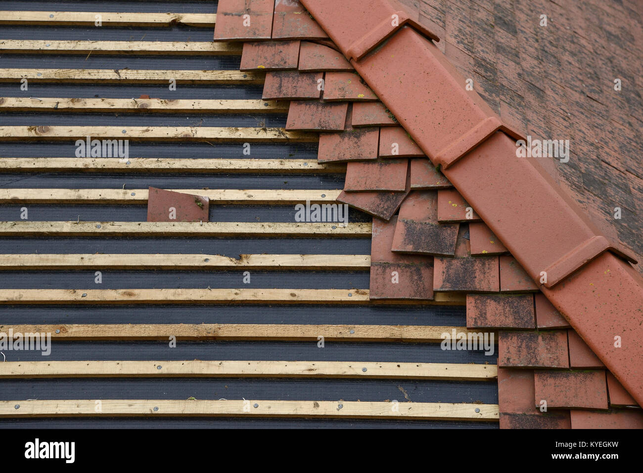 Timber Roof Battens On A Partially Refurbished Roof Stock