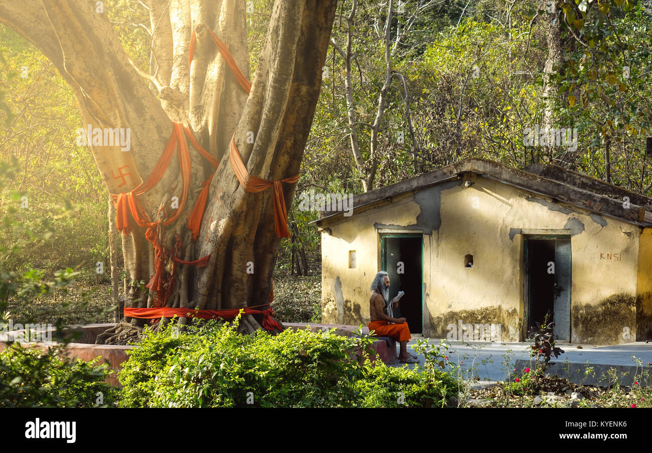A classic view of  indian sadhu old holy man reading newspaper in front of his hut Stock Photo
