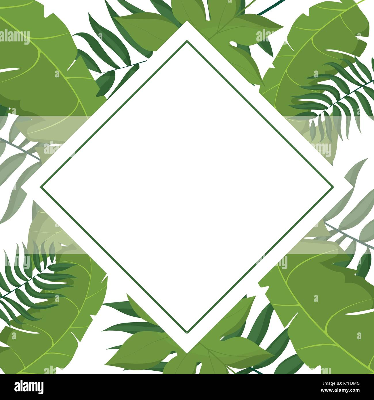 Tropical Leaves Frame Stock Vector Image Art Alamy Modern green tropical plant leaves canvas art print poster , nordic green plant wall pictures kids room large painting no frame. alamy