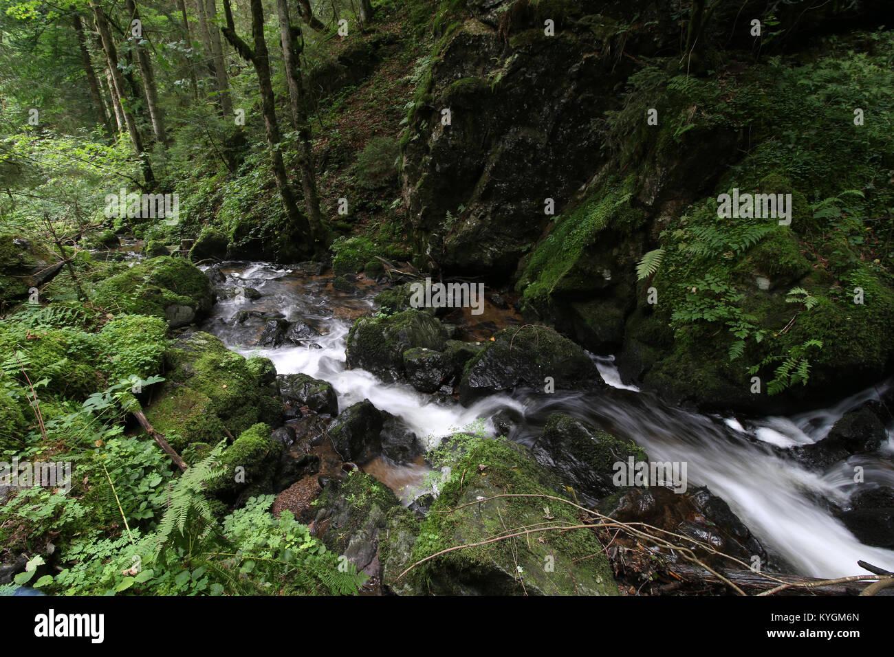 Waterfalls in Baden-Württemberg, Germany - Stock Image