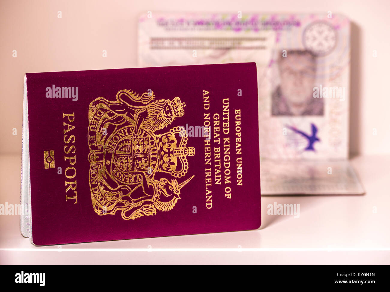Passport Photo Stock Photos & Passport Photo Stock Images