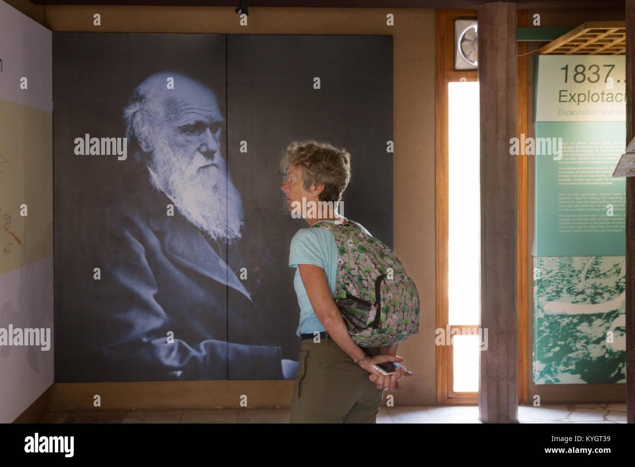 A tourist and an image of Charles Darwin; The Interpretation Centre ( aka Galapagos Science centre ), San Cristobal - Stock Image