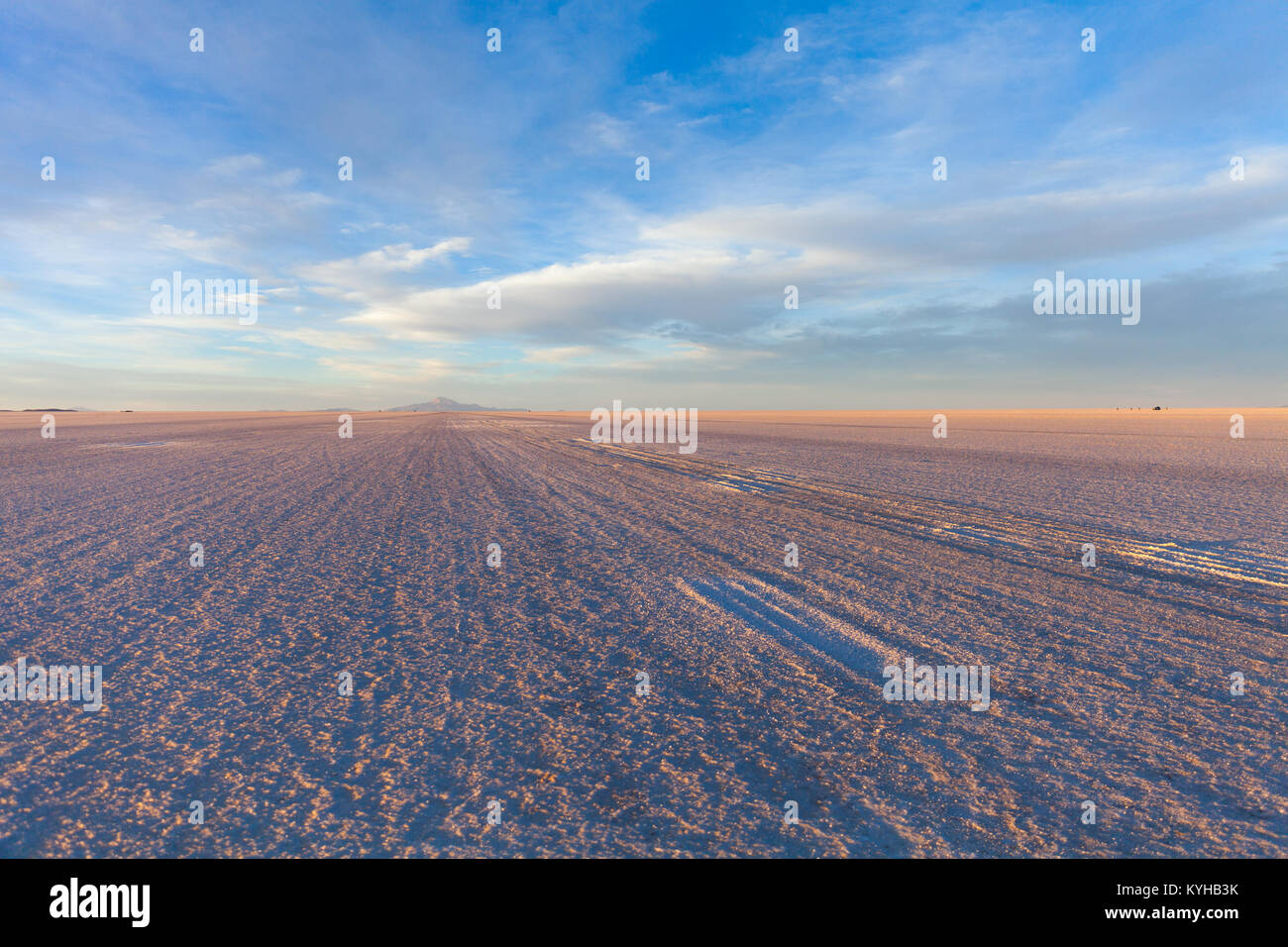 Salar de Uyuni salt marsh - Stock Image