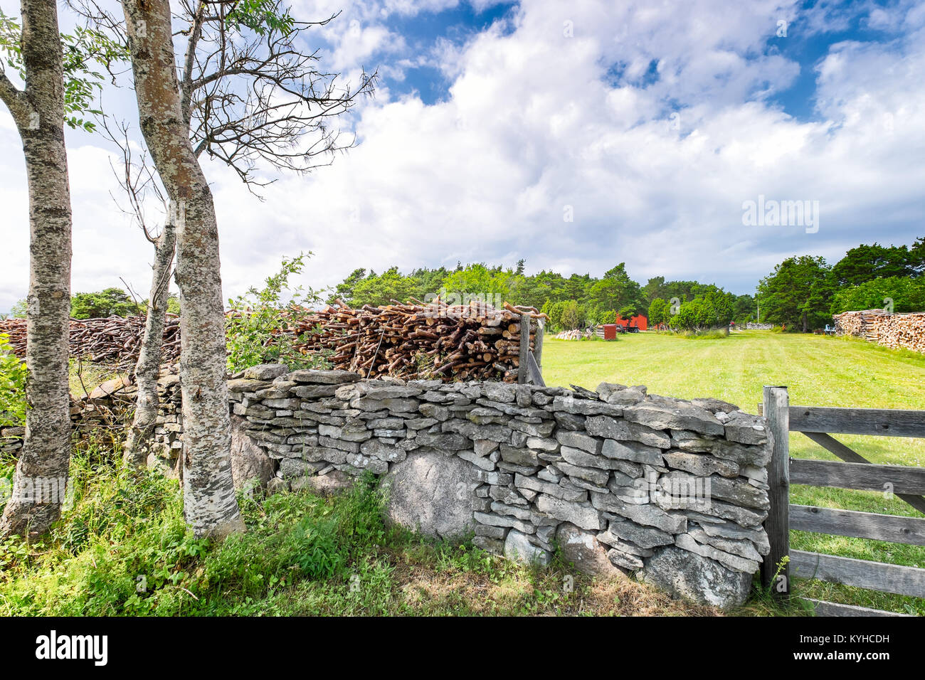 Swedish country farm landscape. Old stone walls, green fields, wooden gate and birch trees - Stock Image