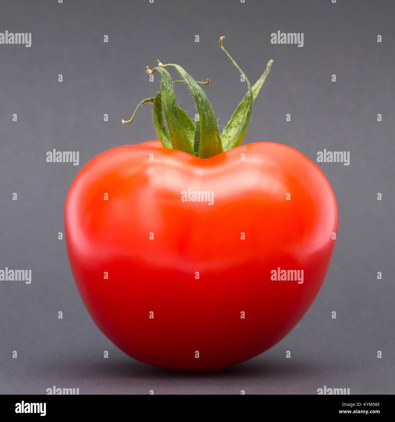 Red tomato on grey background - Stock Image