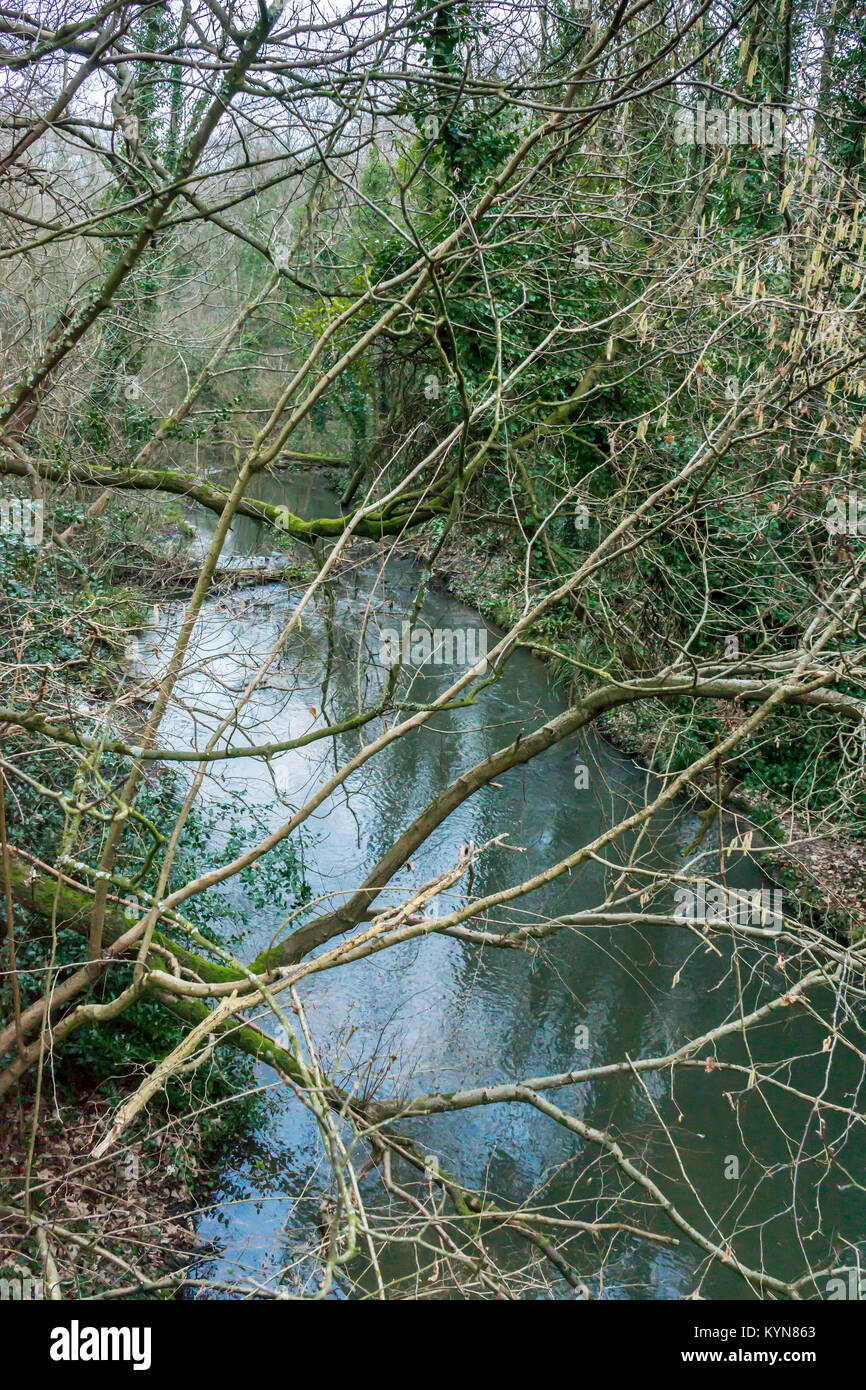The Meon river in Hampshire, England, UK - Stock Image