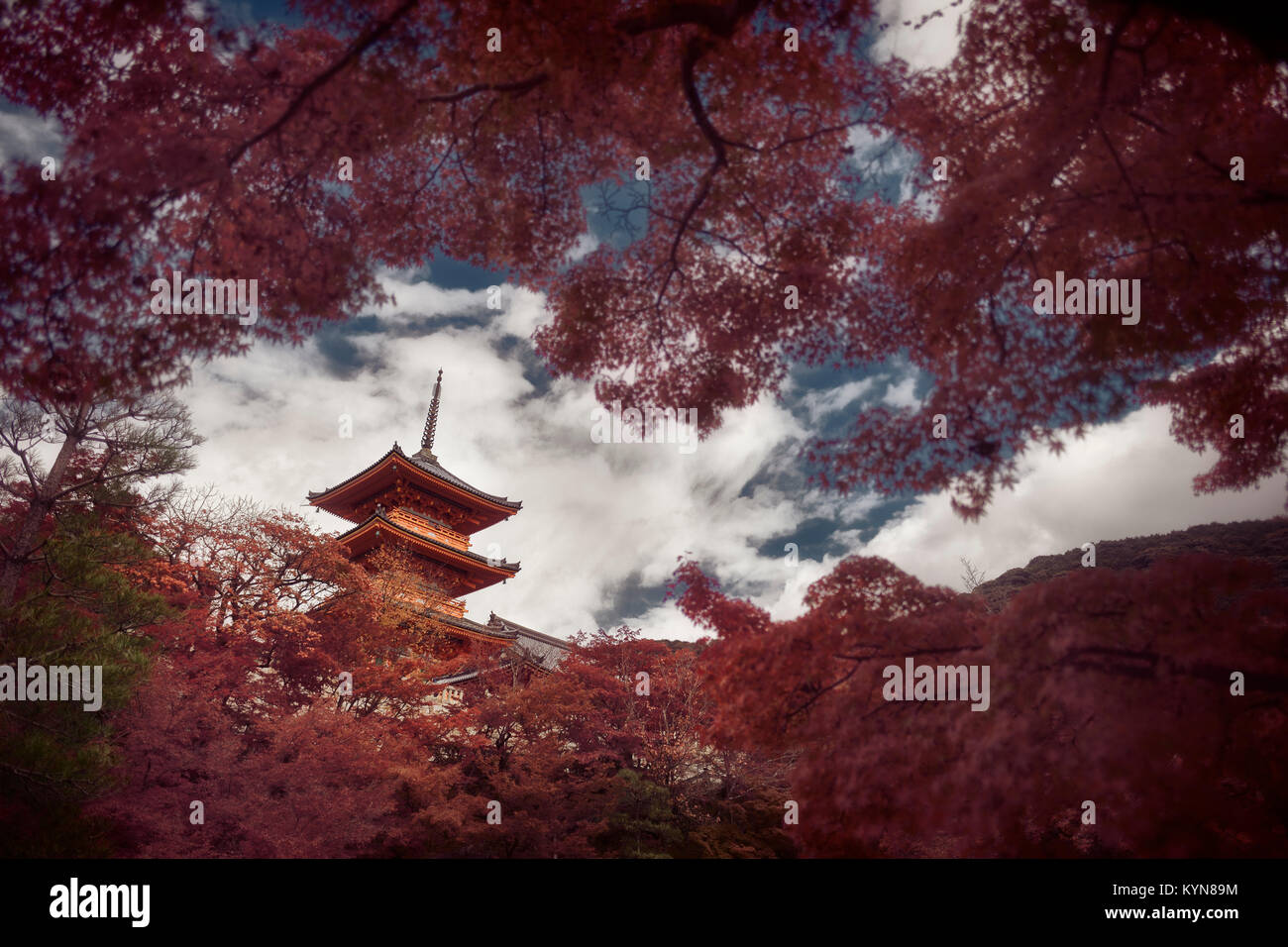 Dramatic artistic photograph of Sanjunoto pagoda of Kiyomizu-dera Buddhist temple in Kyoto, Japan in a beautiful - Stock Image