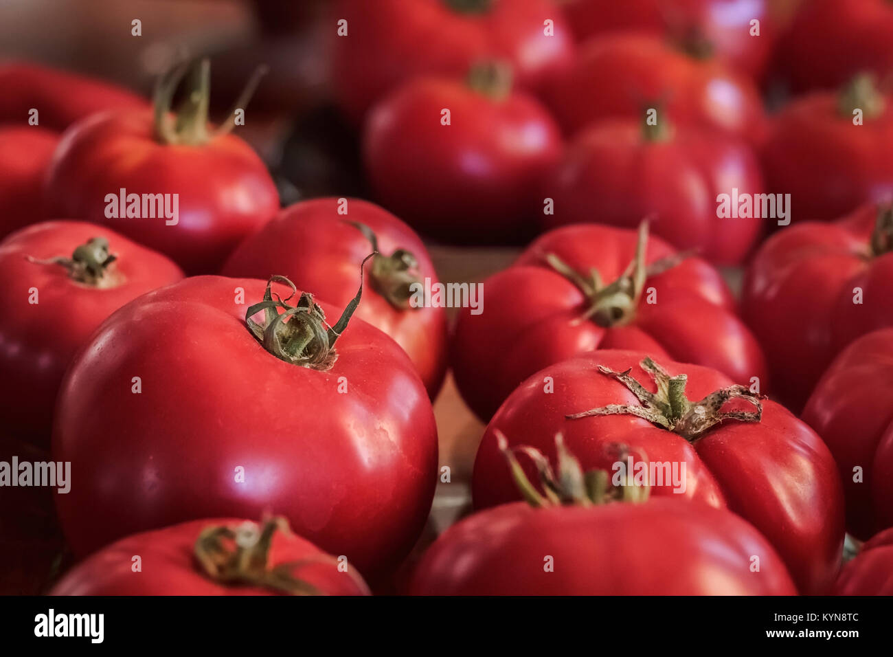 Ripe, red, organic, homegrown heritage variety tomatoes fill the frame, with side lighting and selective focus on - Stock Image