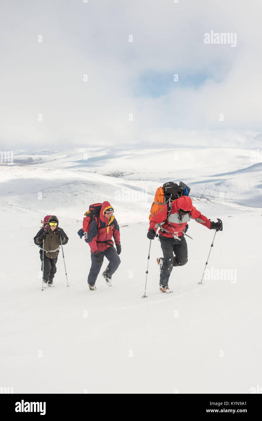 Walking up to snow covered Cairn Gorm Cairngorm National Park Scotland - Stock Image