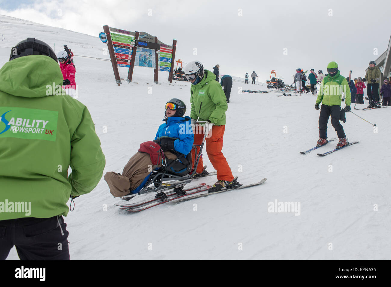 Disability nowsport taking disabled person skiing on the summit of cairngorm mountain. Scotland - Stock Image