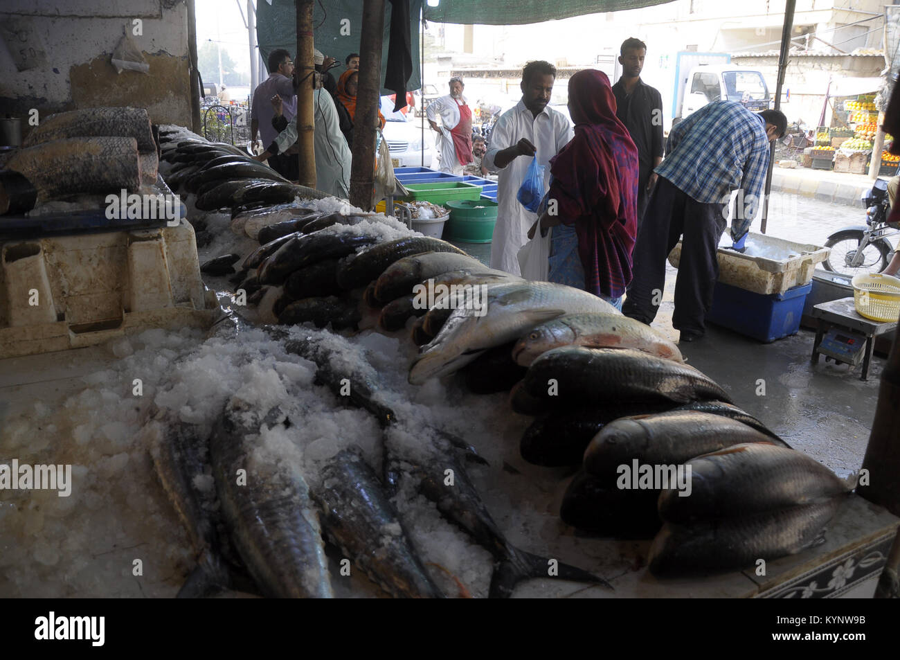 Karachi  15th Jan, 2018  People buy fish at a fish market in