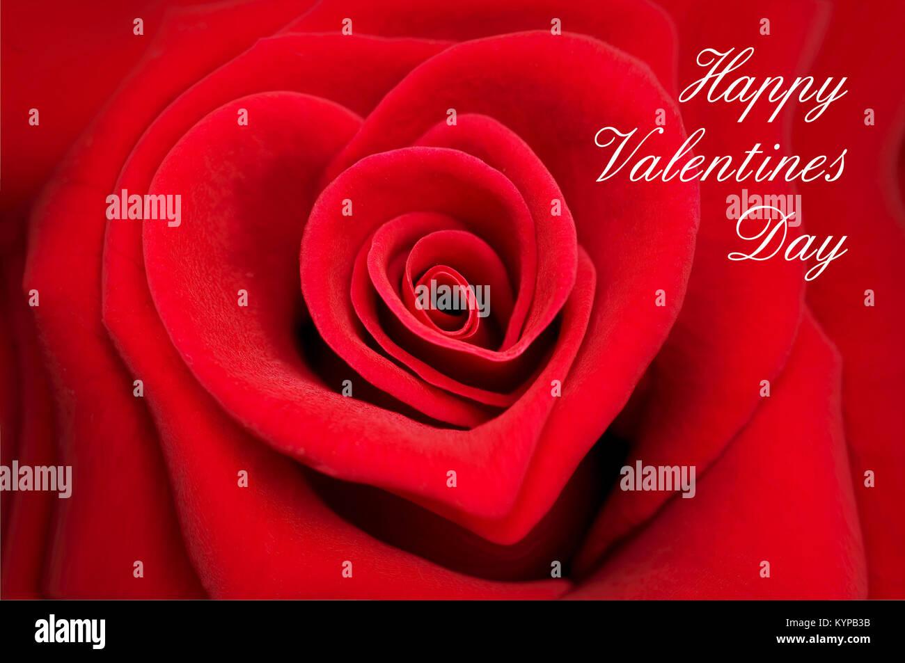 Valentine Greeting Stock Photos Valentine Greeting Stock Images