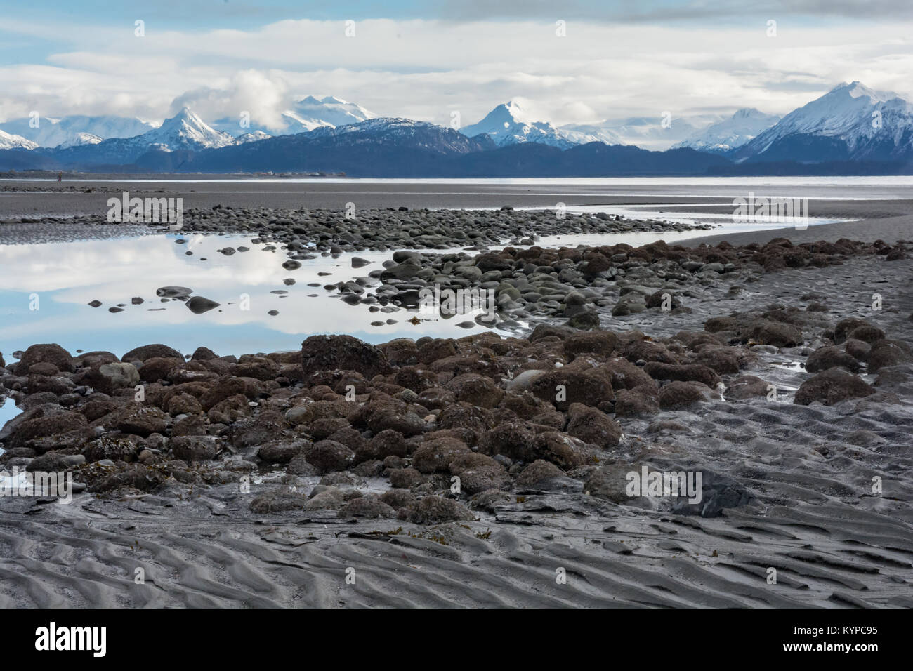 Tidals pools lay exposed at low tide with snow capped mountains in the background. - Stock Image