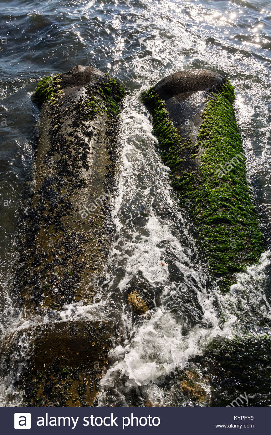 Outfall from a waste pipe into the sea & Outfall from a waste pipe into the sea Stock Photo: 171984493 - Alamy