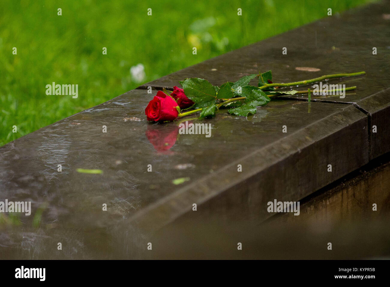 Monday 05 June 2017 Pictured: Roses left as a mark of respect  Re: A vigil has been held in Swansea City Centre - Stock Image