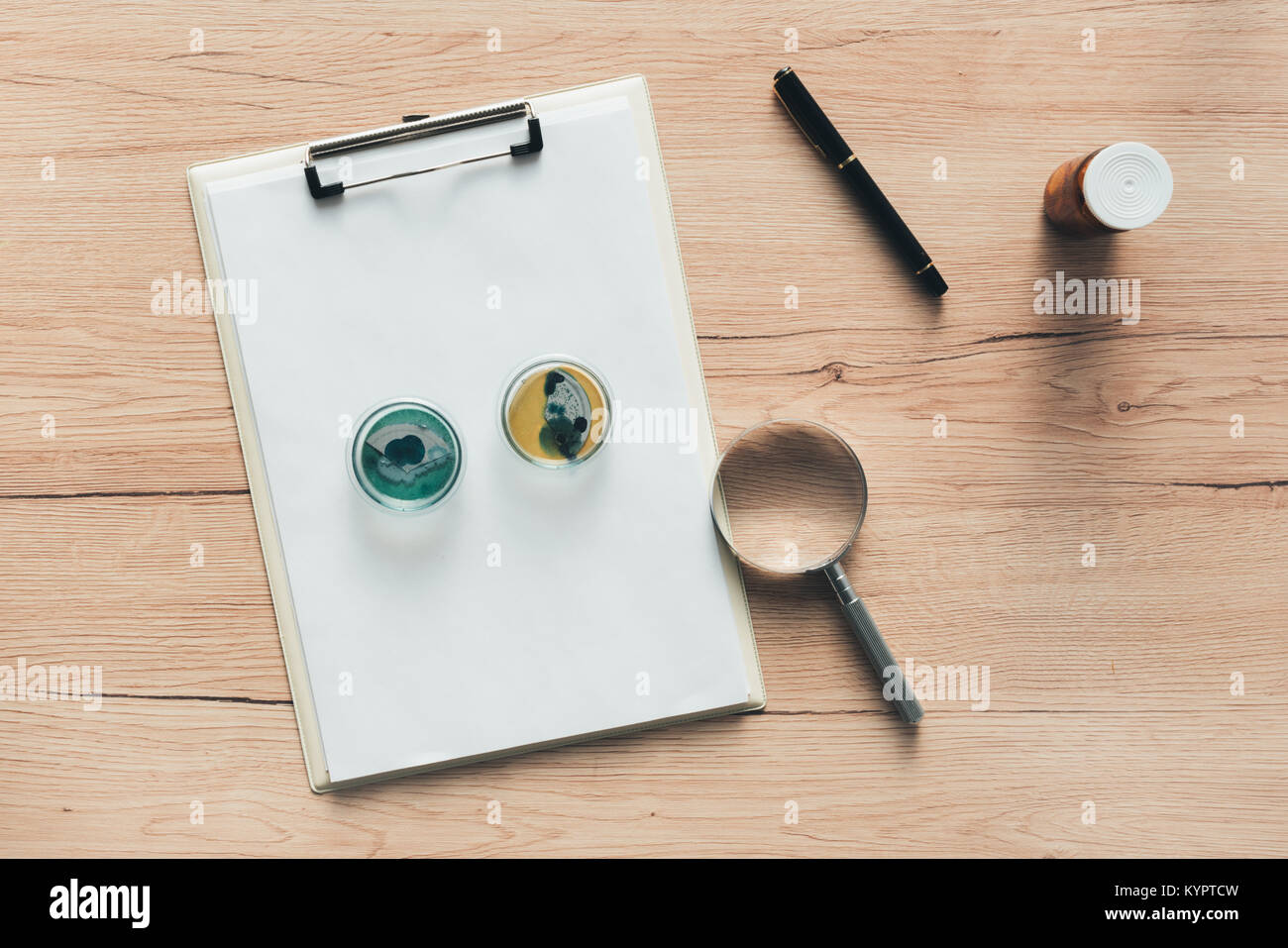Overhead view of laboratory bacterial cultures in petri dish, science and microbiology background - Stock Image