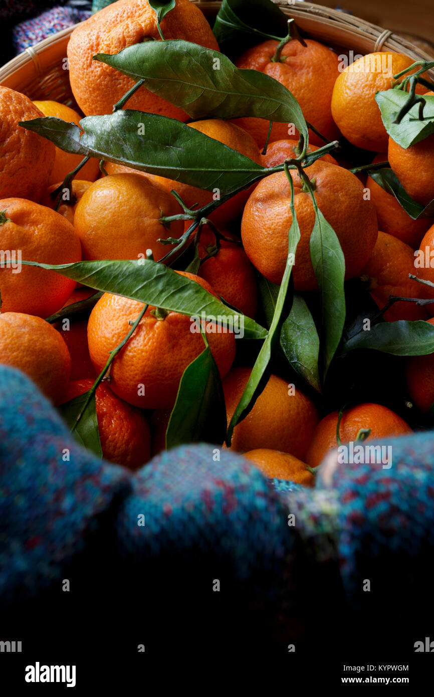 Clementine oranges in a basket - Stock Image
