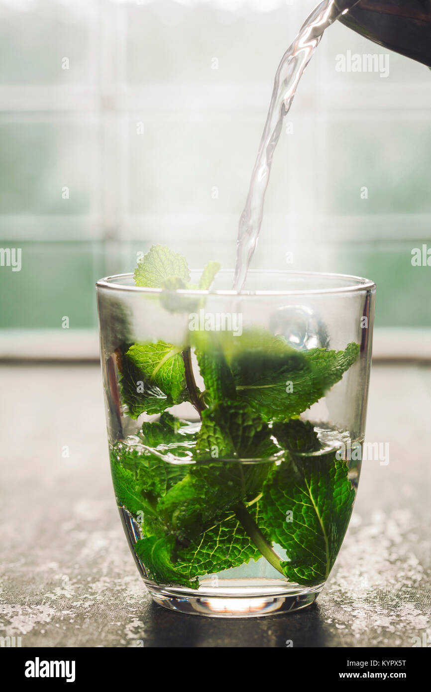 Fresh mint tea near the window. Cozy home or health concept - Stock Image