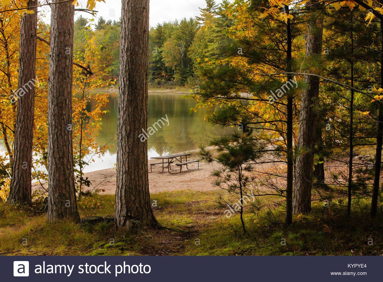 Autumn Colors In Vilas Park Lagoon >> In Late September As The Colors Are Changing Solitude Returns To